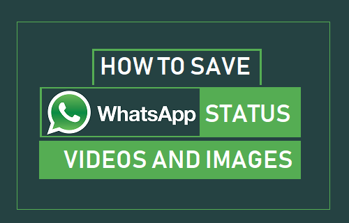 Download WhatsApp Status video